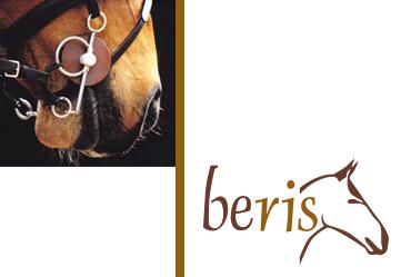 Beris-Banner
